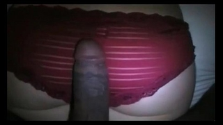 Red panty fuck